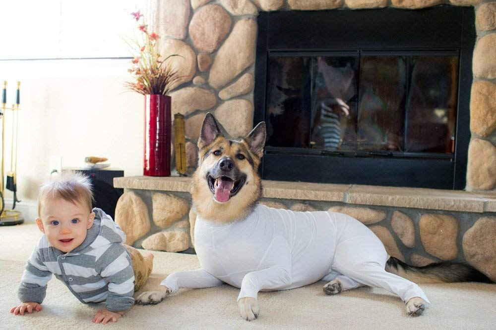 Dog Onesies Now Exist To Stop Your Furry Bff Shedding